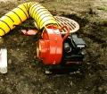 Where to rent MANHOLE BLOWER W 14 5 HOSE in Honolulu HI