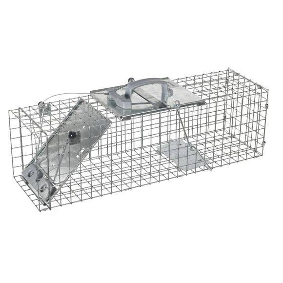 Where to find MEDIUM EASY SET CAGE TRAP in Honolulu